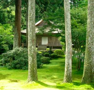 Maison dans la forêt